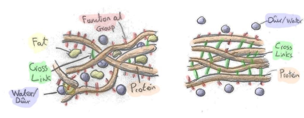 Artisaniaeth Eggs image 6