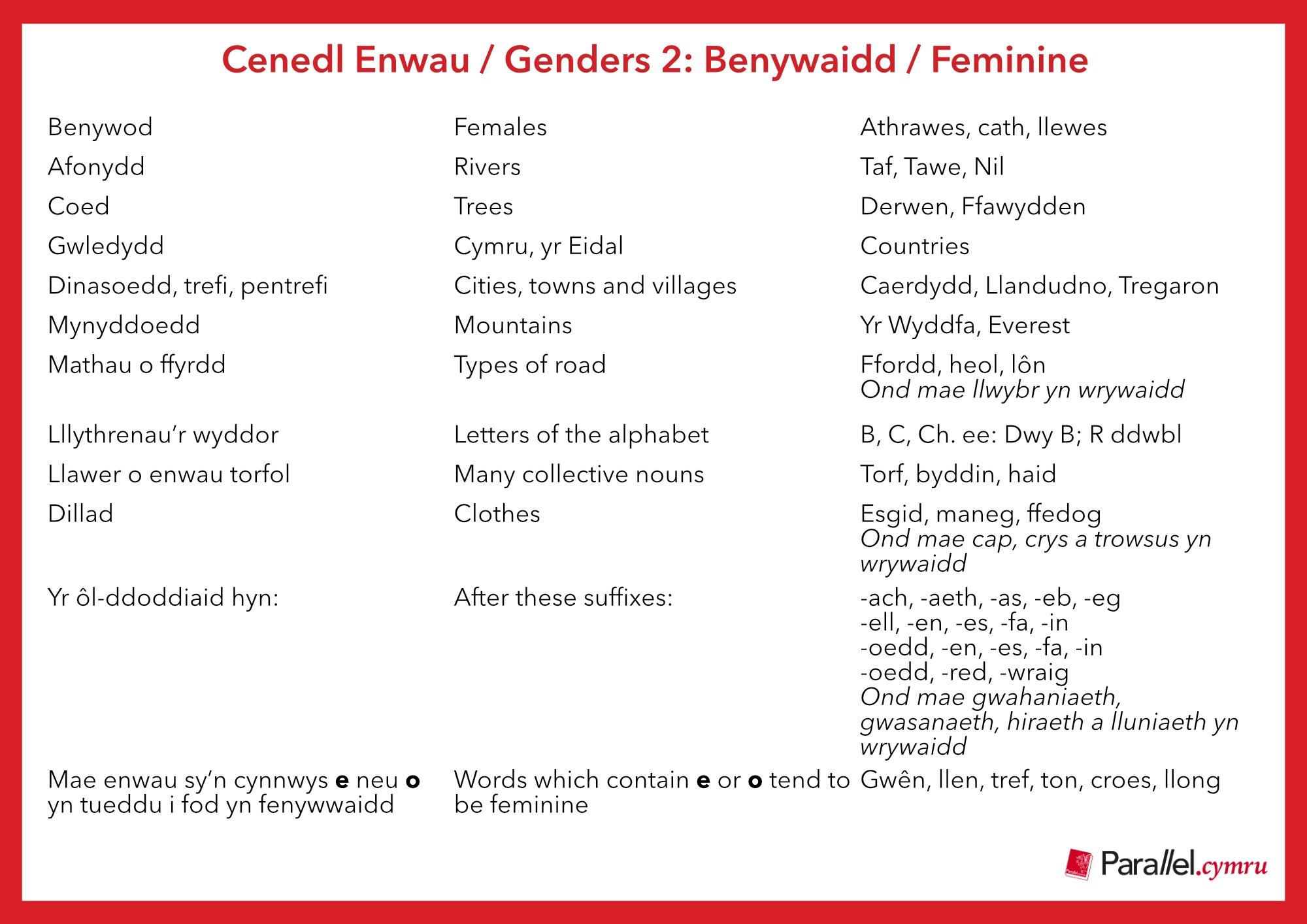 Ask Dr Gramadeg- Genders Feminine