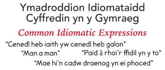 Common Idiomatic Expressions