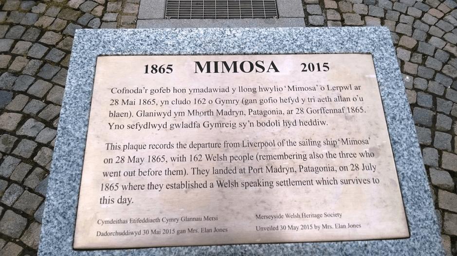 Plaque Mimosa