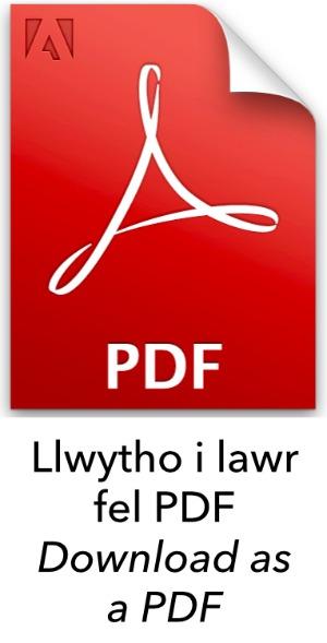Llwytho i Lawr fel PDF