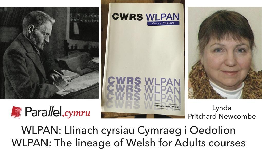 Lynda Newcombe Hanes y Wlpan