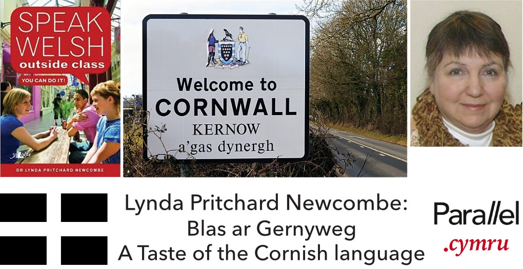 Lynda Pritchard Newcombe- A Taste of Cornish
