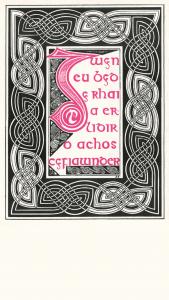 Poster y Lolfa 1 750x1334 parallel.cymru wallpaper