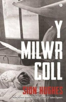 Sion Hughes Y Milwr Coll