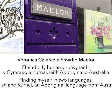 Veronica Calarco - Stiwdio Maelor
