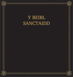 Y Beibl Sanctaidd