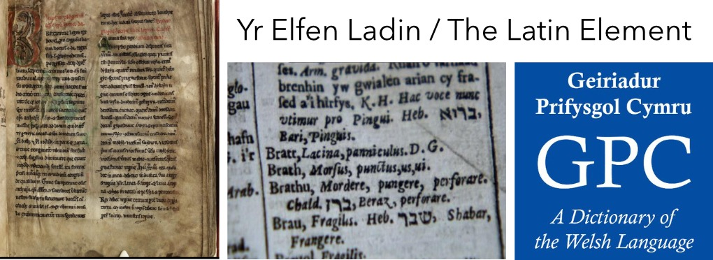 Yr Elfen Lladin- The Latin Element